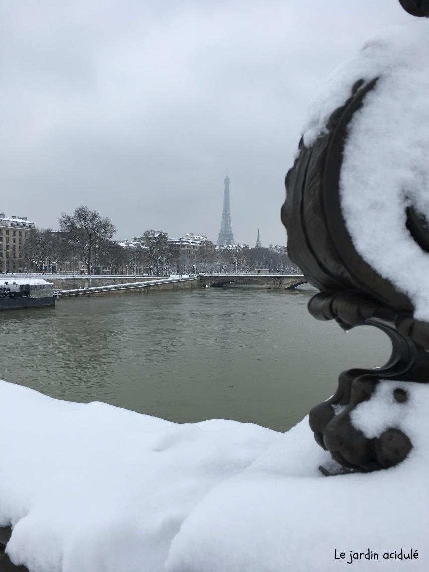 Paris neige 15