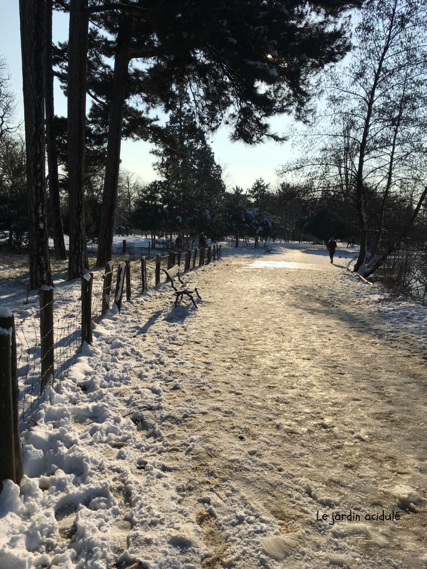 Paris neige 27
