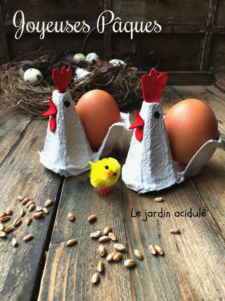 Poules coquetier 1