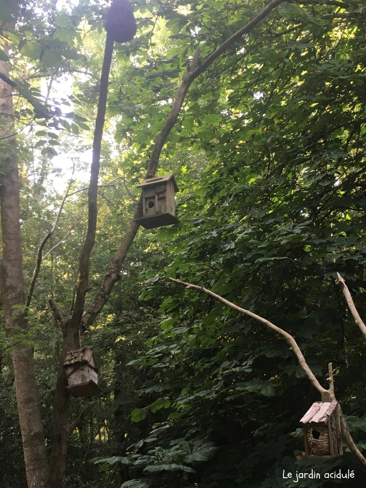 Cabanes dans les arbres2669.jpg