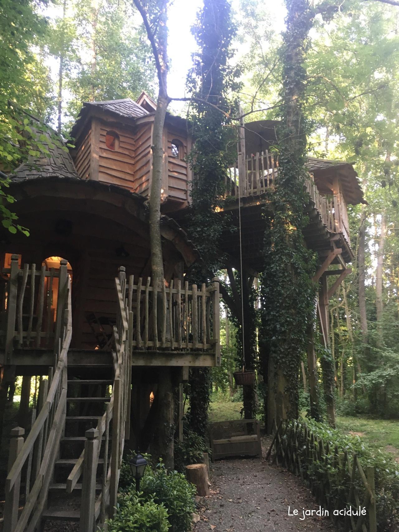 Cabanes dans les arbres2675