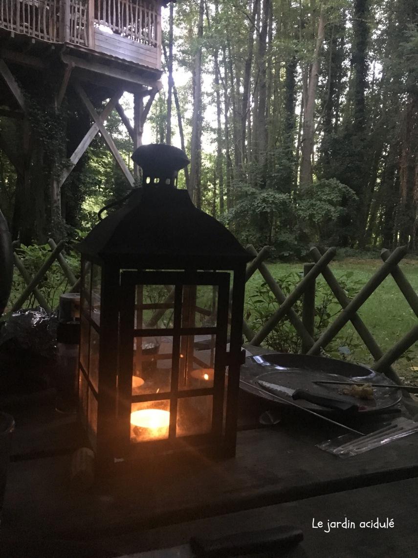 Cabanes dans les arbres2756